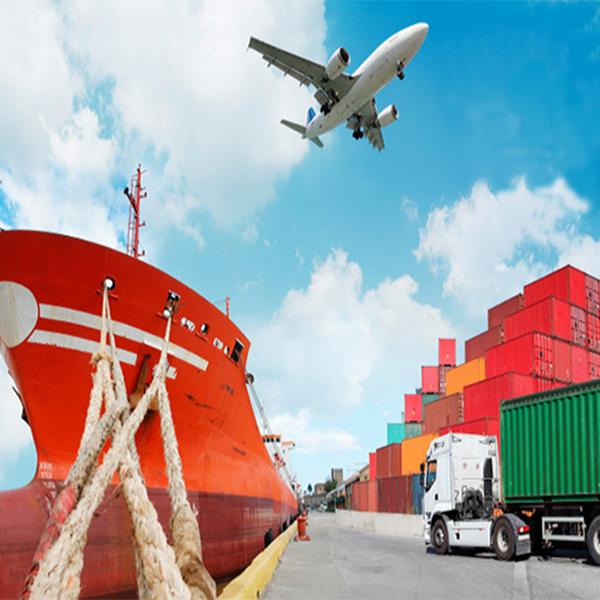 servicios de importacion